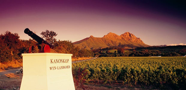 kanonkop wine estate in stellenbosch south africa