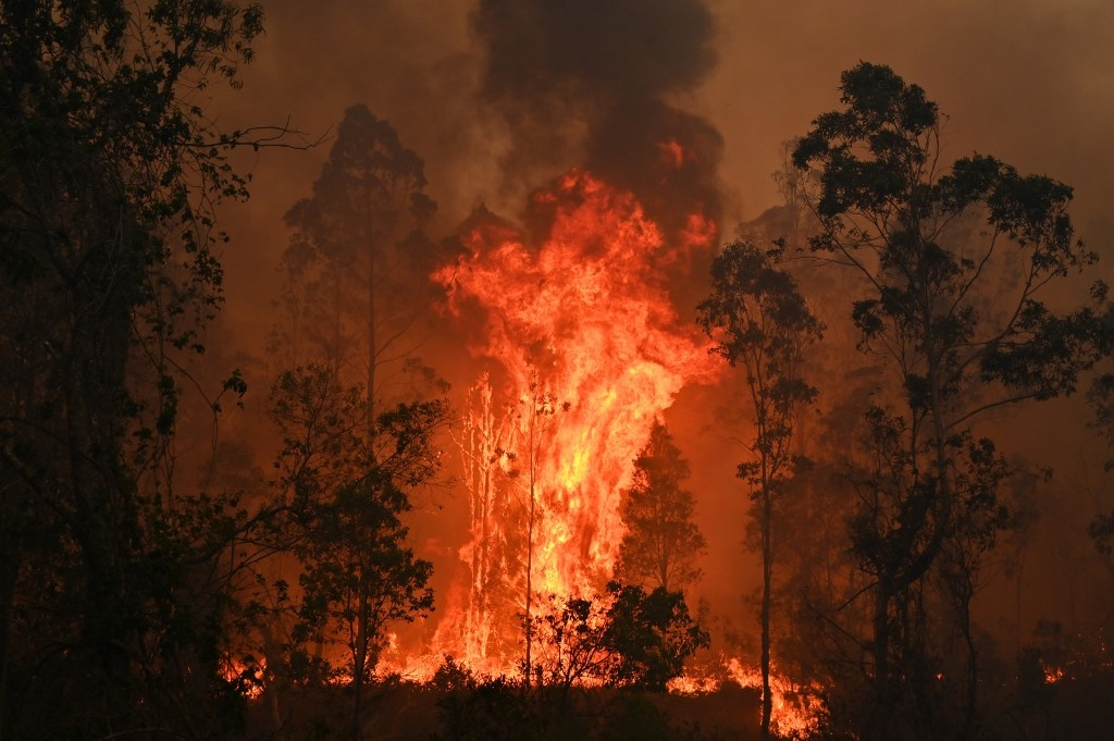News24.com | 'Mega fire' forms north of Sydney