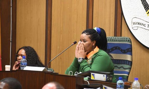 Nelson Mandela Bay Speaker Buyelwa Mafaya.