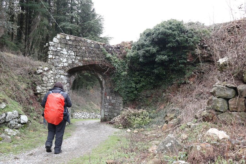 Camino Portugal