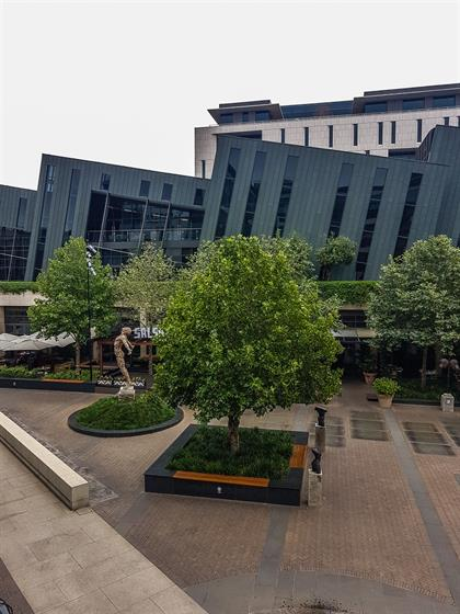scultpure and trees in menlyn maine