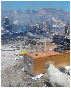 20 shacks were also destroyed i the fire that killed 14-year-old Zinhle Zabo.(Photo:Supplied to DRUM)