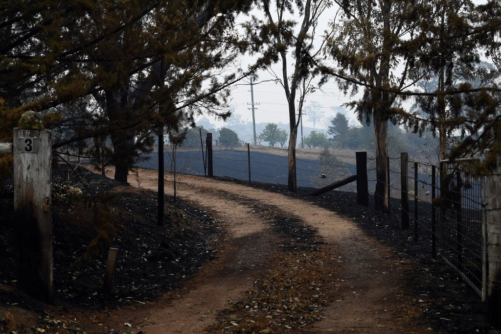 Land charred by bushfires in Quaama in Australia's New South Wales state. (Saeed Khan/AFP).