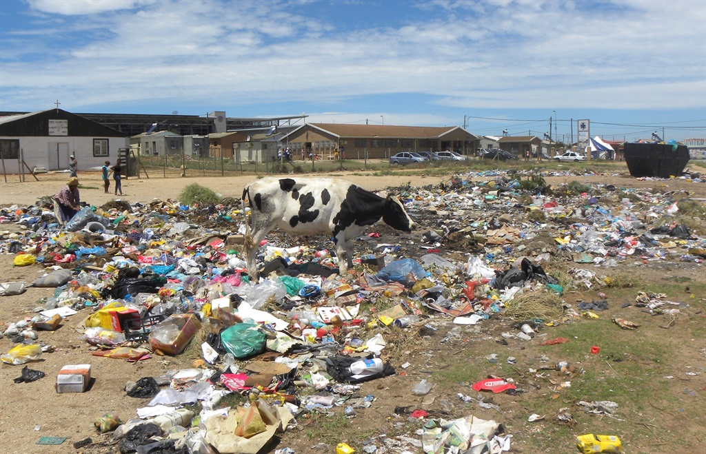 Dumpsites in NU30 in Motherwell have been cleared following the death of four children, apparently after eating toxic food from a nearby dumpsite. But others, like this site in NU10, have not been cleared. (Joseph Chirume, GroundUp)