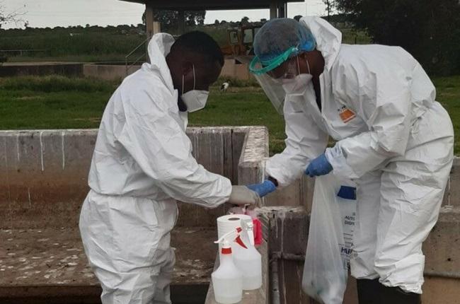 coronavirus,wastewater