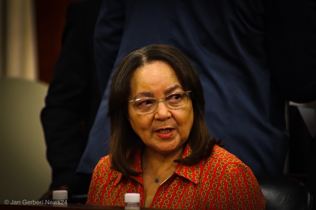 Minister of Public Works and Infrastructure Patricia de Lille. (Jan Gerber, News24)