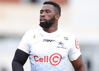 Kolisi set for Cape Town return with Sharks, but Stormers not fretting over passing of info