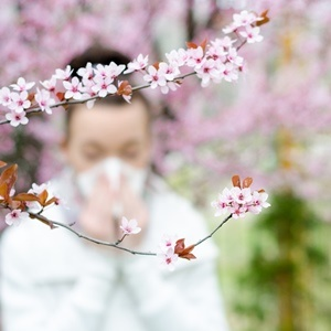 Allergy symptoms can make you cranky and achy, but they can be managed.