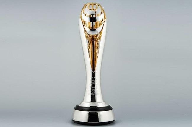 Lions Series trophy.