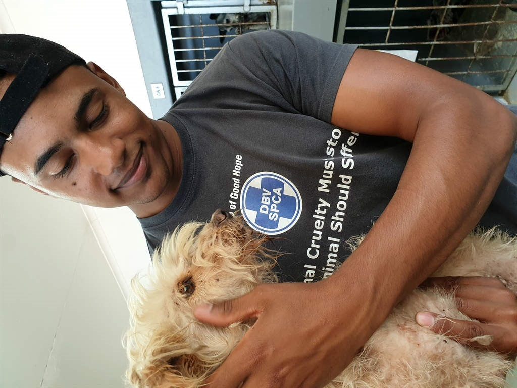 Rescued pup Lulu with animal welfare assistant Joshua Campbell.