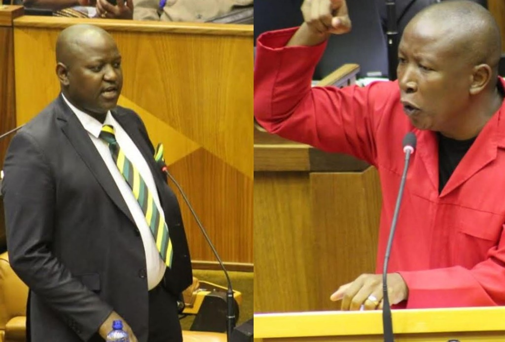 ANC MP Boy Mamabolo has apologised to EFF leader Julius Malema following their heated exchange in Parliament.