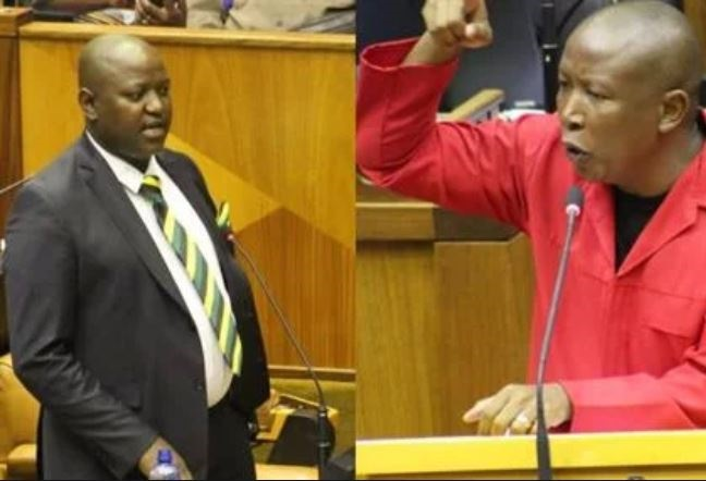SONA debate: Sonke Gender Justice wants 'remedial' action against Mamabolo, Malema - News24