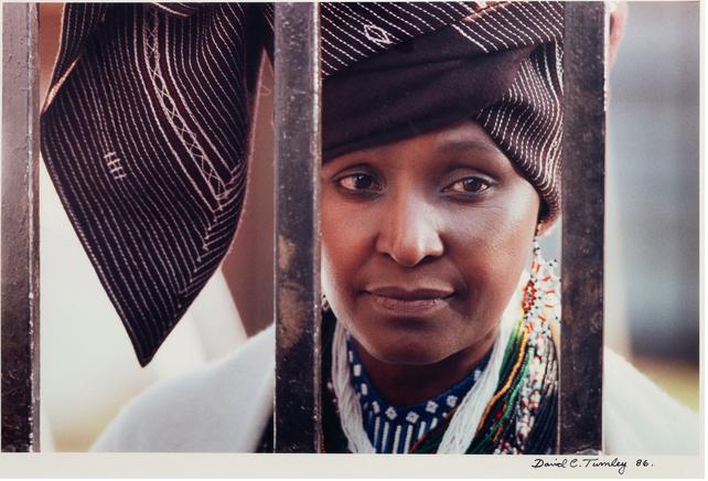 Winnie Madikizela-Mandela captured by David C Turn