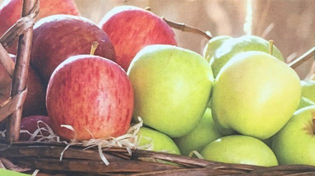 Tru-Cape is redoubling efforts to grow better quality fruit and pack to the agreed standard. (Source: Tru-Cape)