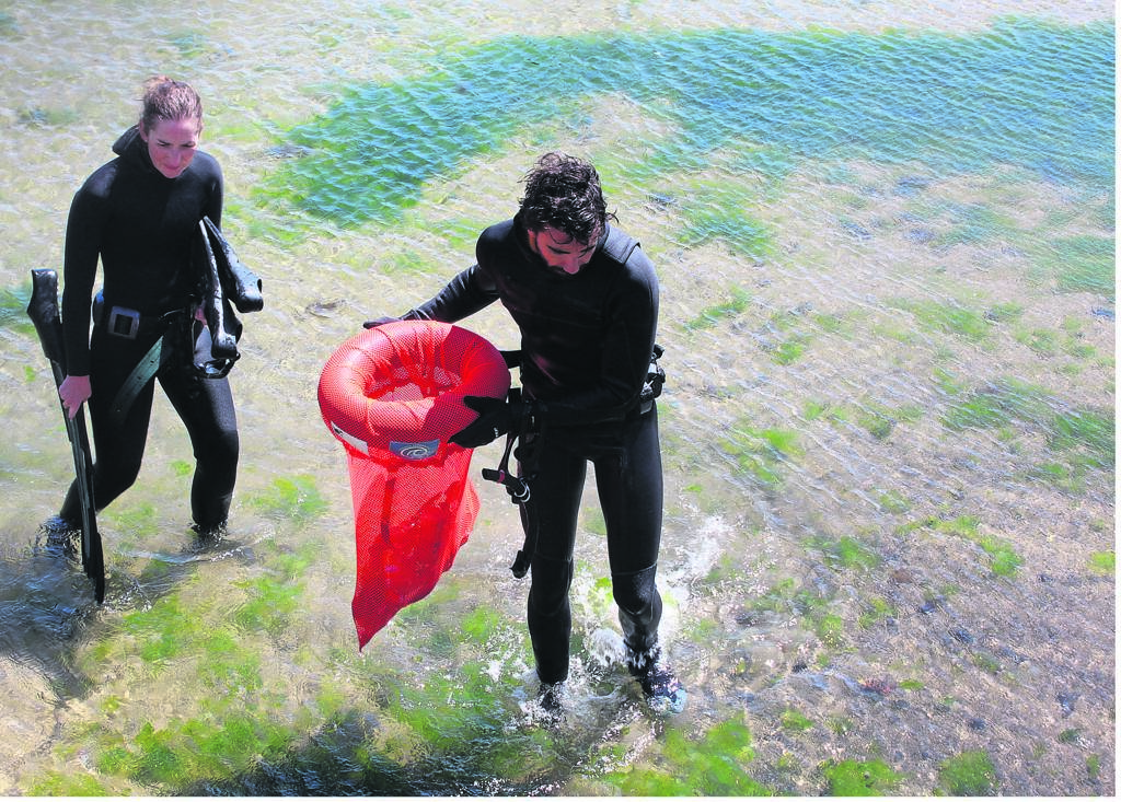 Divers take the responsibility to keep coastal waters clean seriously.PHOTO: Racine Edwardes