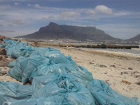 The Council had sent in a team which were collecting thousands of bags full of plastic pollution, there is still thousands to be filled. Some citizens put a hand in but very few.