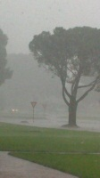 Pouring rain in Welkom (more than 150mm of rain)